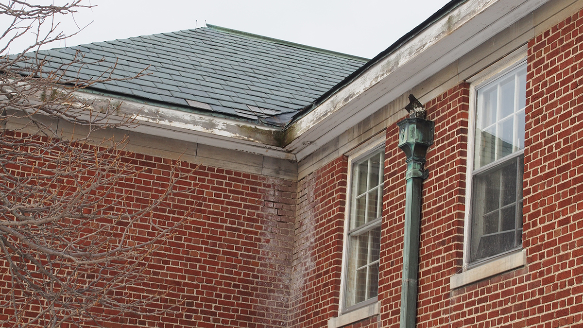Roofs Building Resilience